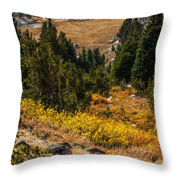 Early Fall In The Beartooth's Throw Pillow by Sue Smith
