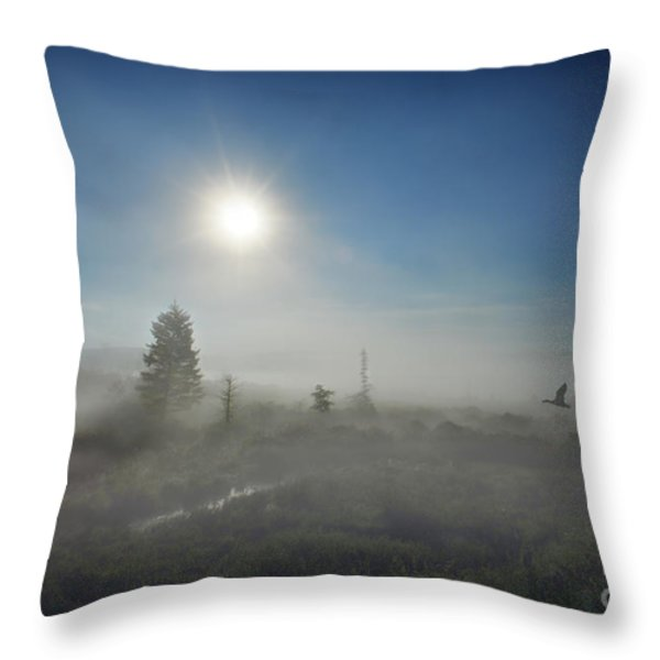 Early morning fog at Canaan Valley Throw Pillow by Dan Friend