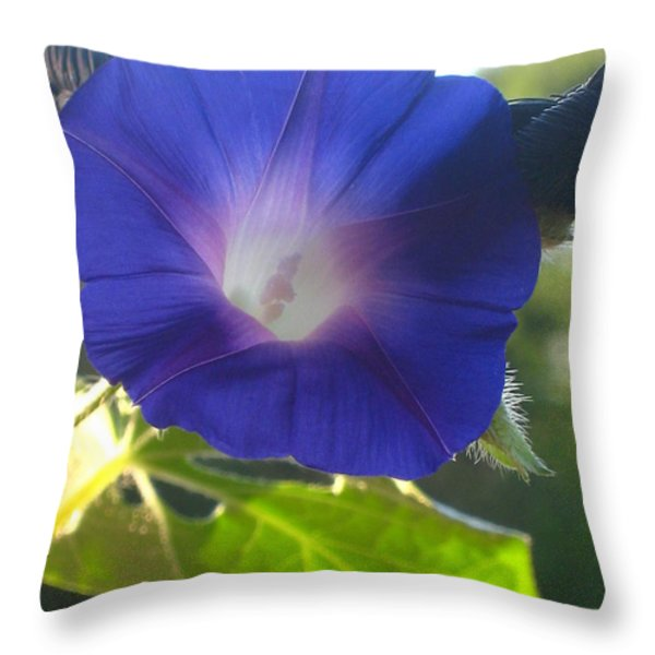 Early Morning Glory Throw Pillow by Jennifer Doll