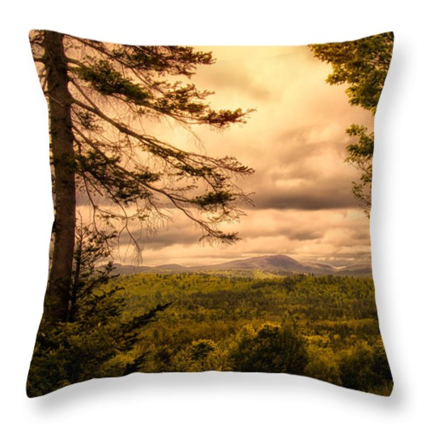 Early Spring Rain Throw Pillow by Bob Orsillo