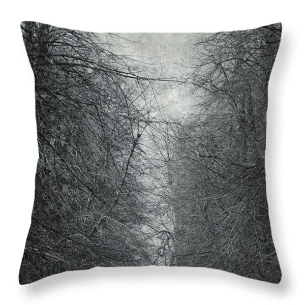 Early Spring Throw Pillow by Svetlana Sewell