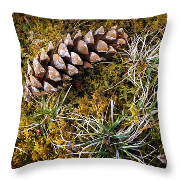 Earth Hour Throw Pillow by Christina Rollo