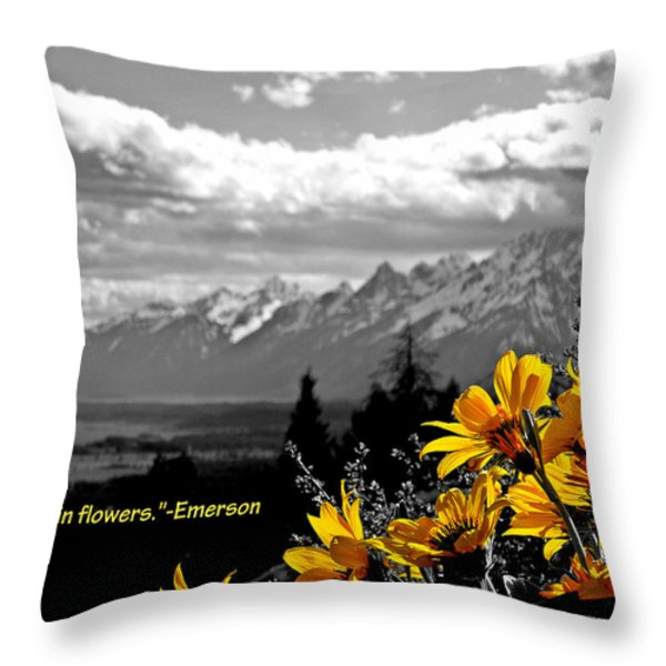 Earth laughs in flowers Throw Pillow by Dan Sproul