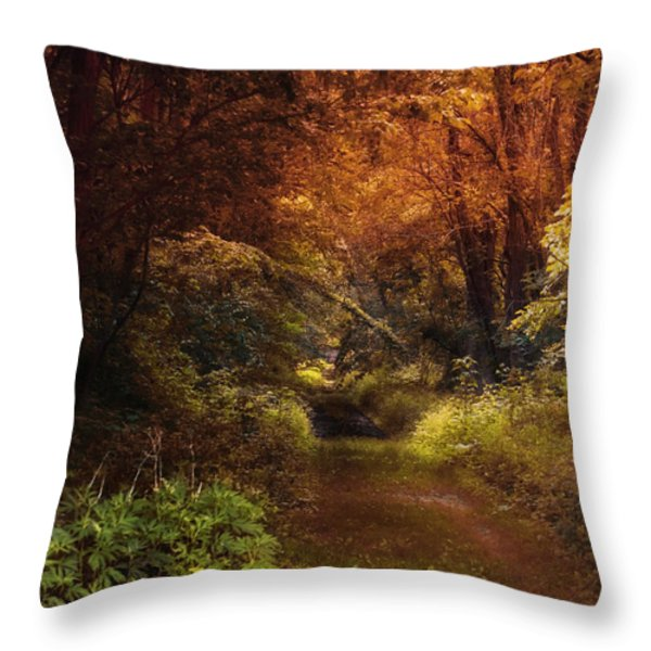 Earth Tones In A Illinois Woods Throw Pillow by Thomas Woolworth