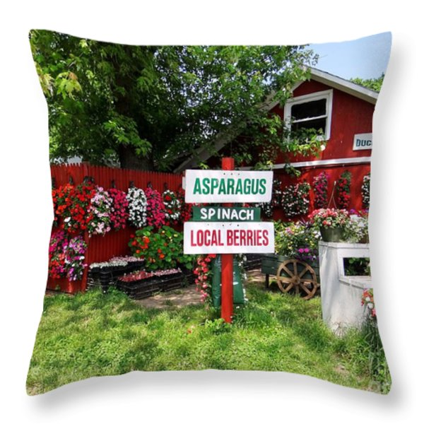 east end farmstand Throw Pillow by Ed Weidman