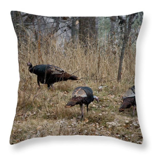 Eastern Wild Turkeys Throw Pillow by Linda Freshwaters Arndt