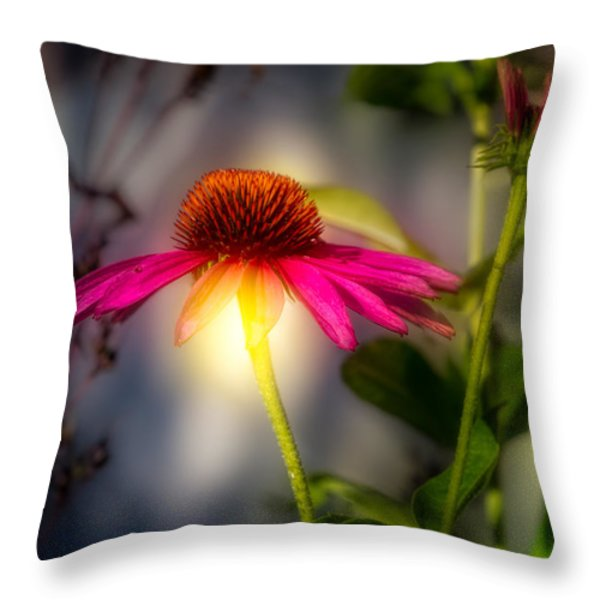 Echinacea Sunrise Throw Pillow by Bob Orsillo