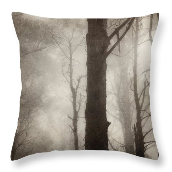 Edge Of Eternity Throw Pillow by Amy Weiss