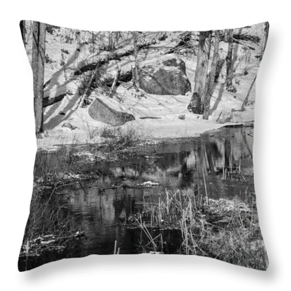 Edge Of The Marsh Throw Pillow by Alana Ranney