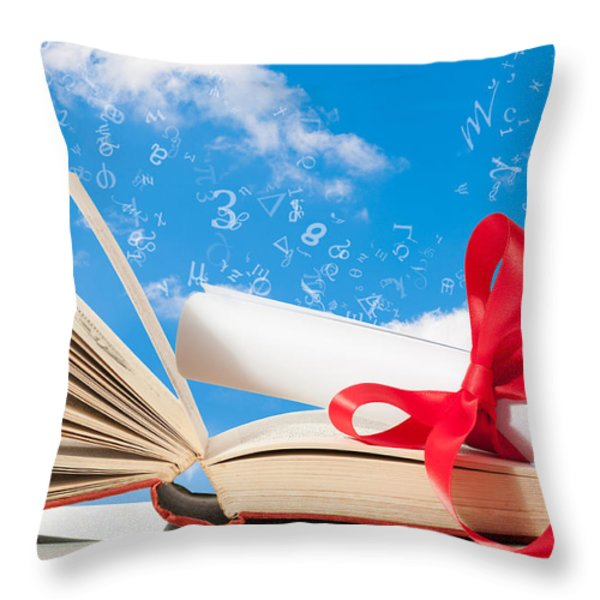 Education Throw Pillow by Amanda And Christopher Elwell