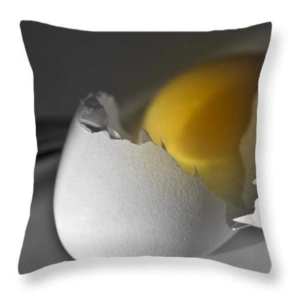 Egg Throw Pillow by Ioana Todor