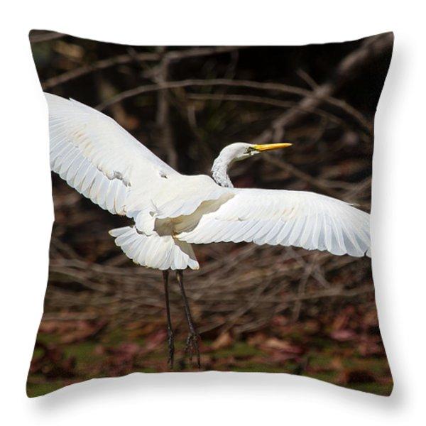 Egret In Flight Throw Pillow by Mr Bennett Kent