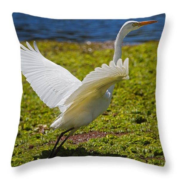 Egret Taking Off Throw Pillow by Mr Bennett Kent