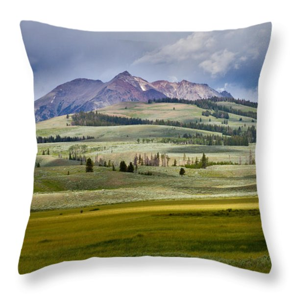 Electric Peak Throw Pillow by Bill Gallagher