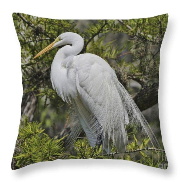 Elegance Posed In Tree Throw Pillow by Deborah Benoit