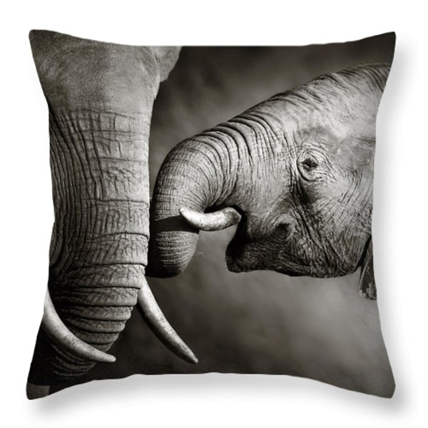 Elephant Affection Throw Pillow by Johan Swanepoel