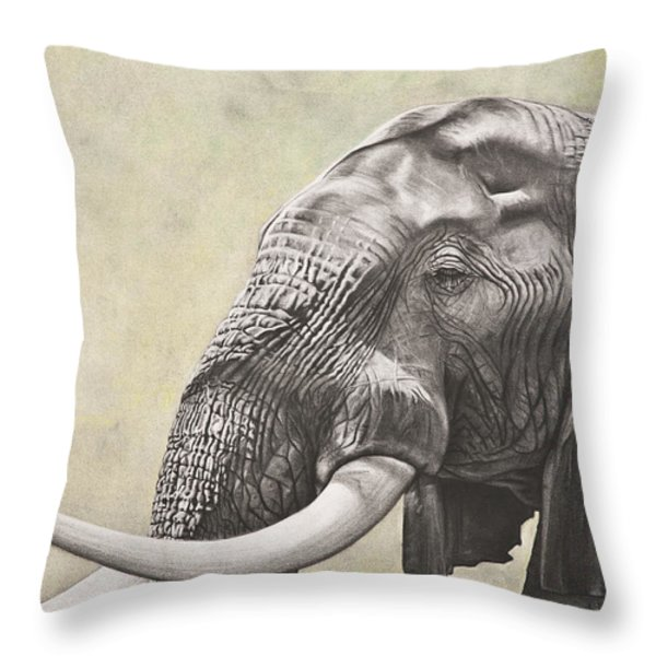 Elephant Throw Pillow by Ashleigh Dix