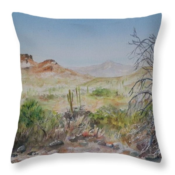 Elephant Mountain From Dragonfly Trail Throw Pillow by Michael McGrath