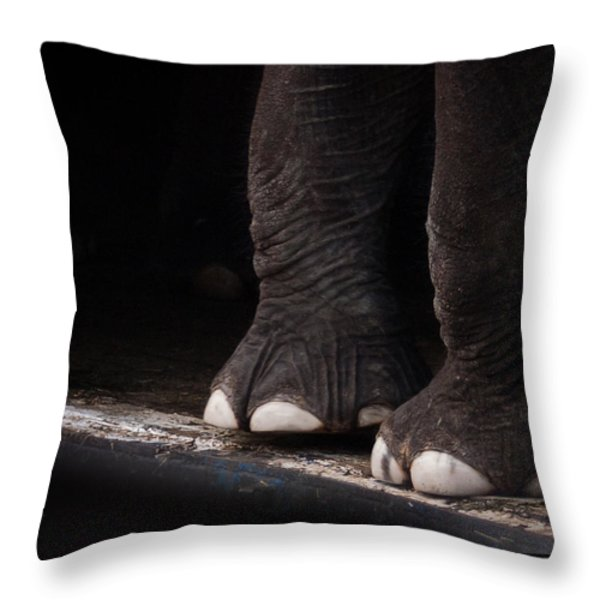 Elephant Toes Throw Pillow by Bob Orsillo