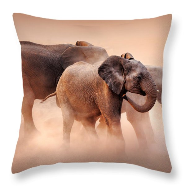 Elephants In Dust Throw Pillow by Johan Swanepoel