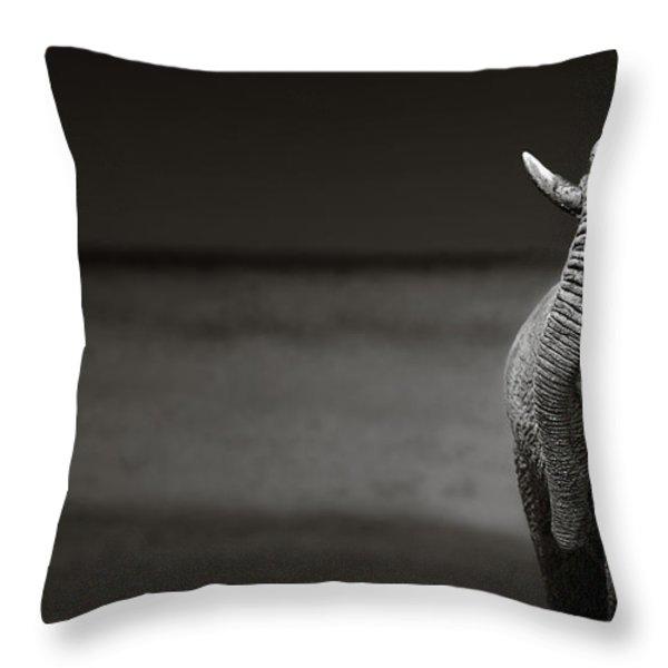 Elephants interacting Throw Pillow by Johan Swanepoel