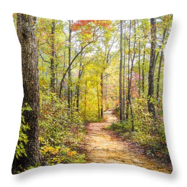 Elfin Forest Throw Pillow by Debra and Dave Vanderlaan
