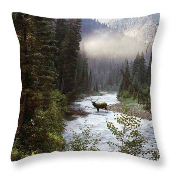 Elk Crossing Throw Pillow by Leland D Howard