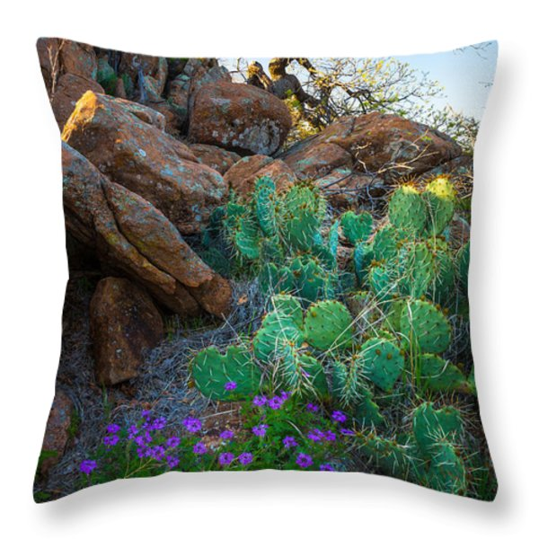 Elk Mountain Flowers Throw Pillow by Inge Johnsson