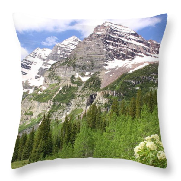 Elk Mountains Throw Pillow by Eric Glaser