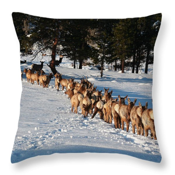 Elk Train Throw Pillow by Steven Reed