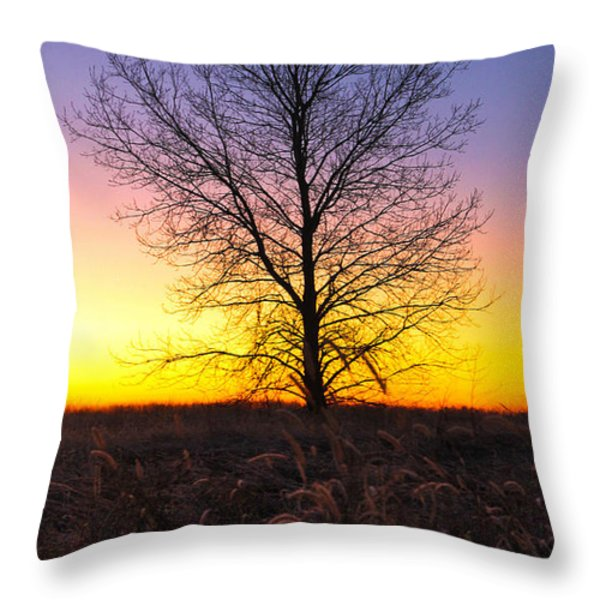 Ellis Island Lone Tree Throw Pillow by David Yunker