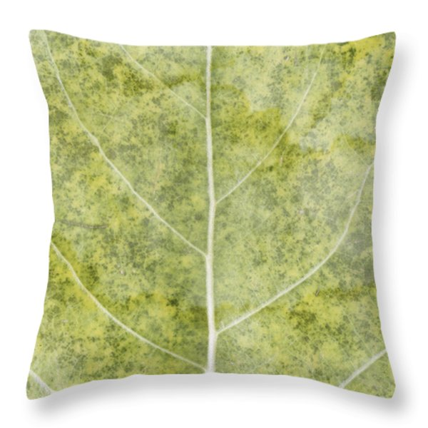 Eloquent Throw Pillow by Brett Pfister