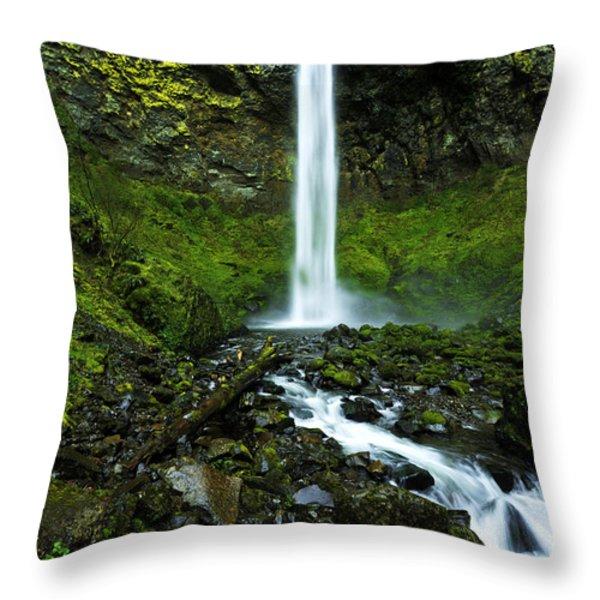 Elowah's Elegance Throw Pillow by Chad Dutson