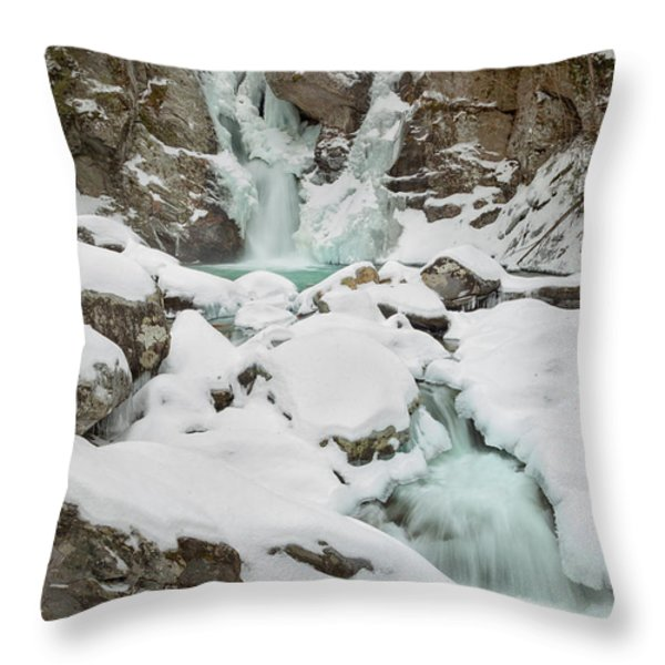 Emerald Waters Throw Pillow by Bill  Wakeley