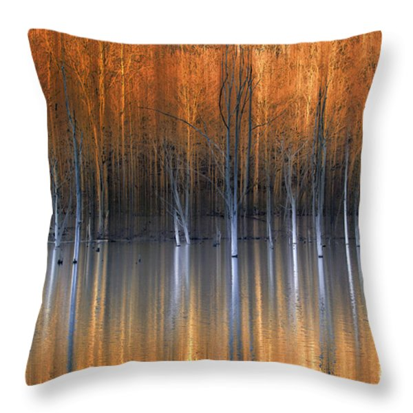 Emerging Beauties Reflected Throw Pillow by Marco Crupi