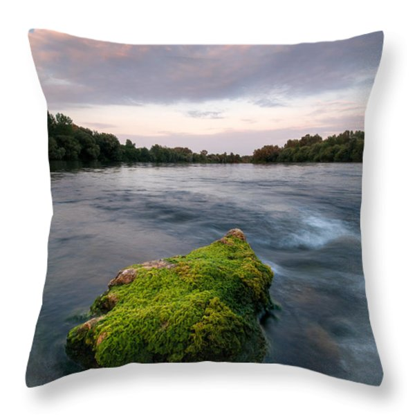 Emerging Throw Pillow by Davorin Mance