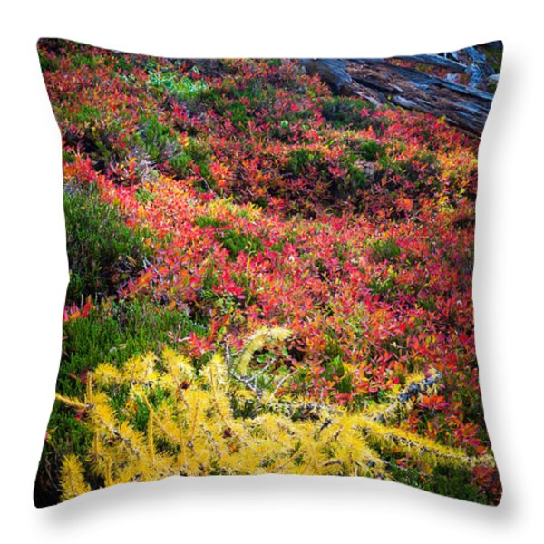 Enchanted colors Throw Pillow by Inge Johnsson