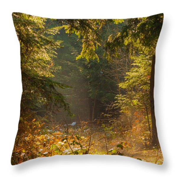 Enchanted Forest Throw Pillow by Evgeni Dinev