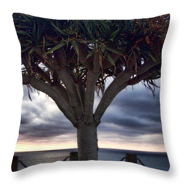 Encinitas Sunset Throw Pillow by Carol Leigh