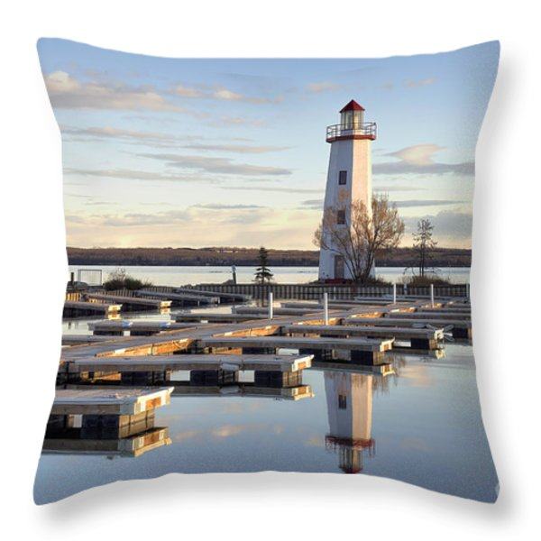 End Of Season-2 Throw Pillow by Shannon Carson