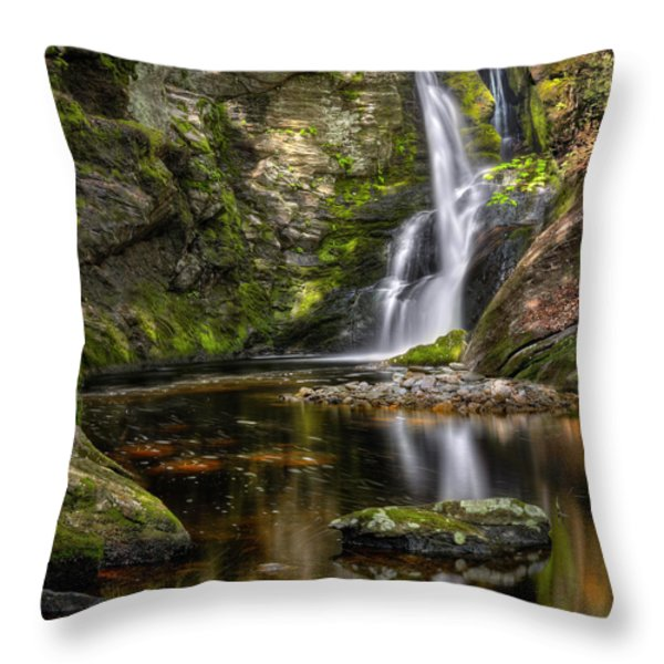 Enders Falls Throw Pillow by Bill  Wakeley