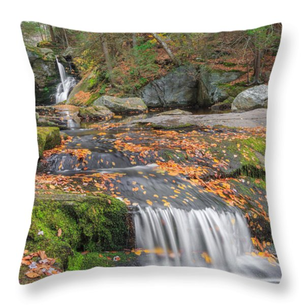 Enders Portrait Throw Pillow by Bill  Wakeley