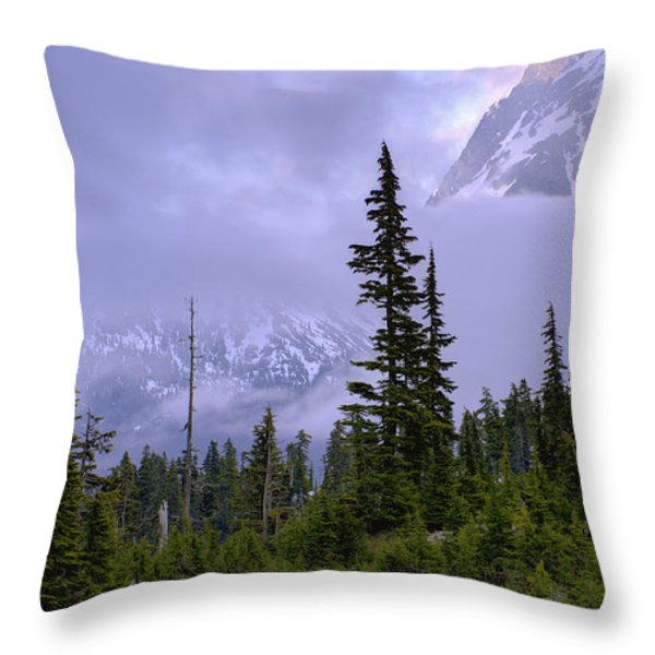 Enduring Winter Throw Pillow by Chad Dutson