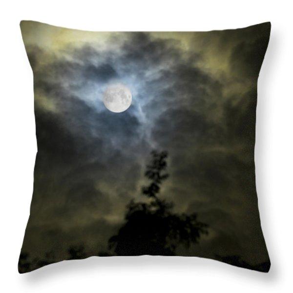 Energize Throw Pillow by Steven Poulton