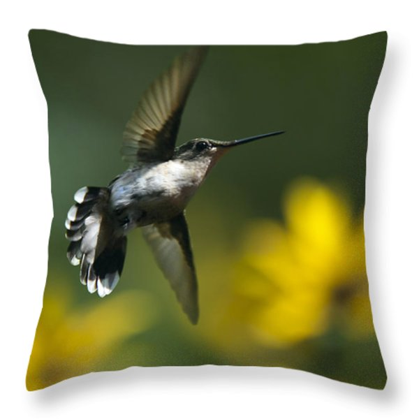 Energy In Motion Throw Pillow by Christina Rollo