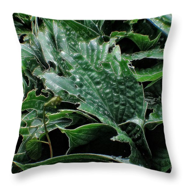 English Country Garden - Series V Throw Pillow by Michael Braham