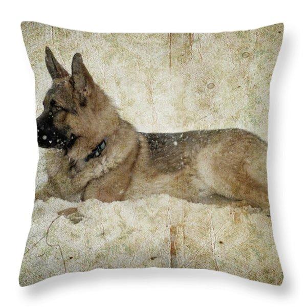 Enjoying the Snow Throw Pillow by Sandy Keeton