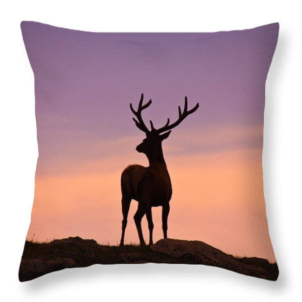 Enjoying the View Throw Pillow by Darren  White