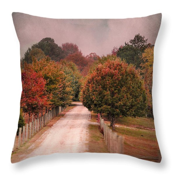 Enter Fall Throw Pillow by Jai Johnson