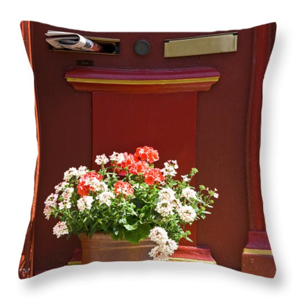 Entrance door with flowers Throw Pillow by Heiko Koehrer-Wagner